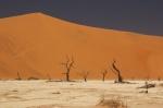 Deadvlei - Sossusvley, Sesriem, Parque Nacional del Desierto del Namib
