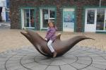 Fungie, el delfín más famoso de Irlanda