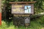 Top famous route of the Quetzales - Volcan Baru Boquete-