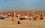 Campamentos Saharauis - Tindouf