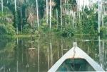 Sailing the Lake Sandoval - Amazonas