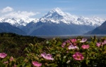 Go to photo: NZ Alps in spring