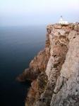 5 días en Menorca. Agosto 2015