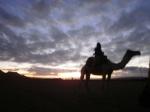 Día 3. Desierto de Zagora y Kasbah de Ait Ben Haddou