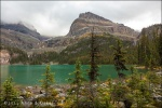 Reservar bus Lake O'Hara