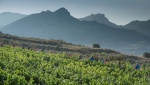Ruta del Vino Rioja Alavesa: Villas con Historia