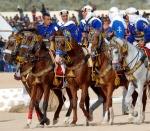 Caballos en el Festival de Douz