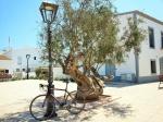 Formentera más allá de la playa: Turismo Activo
