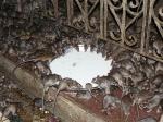 Karni Mata. El Templo de las Ratas en India