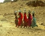 INDIA:  UN VIAJE DE SORPRESAS (Nov-Dic 2011)