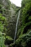 Levada del Caldeirão Verde - Madeira