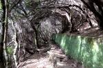 Levada de las 25 Fontes/Levada del Risco - Madeira