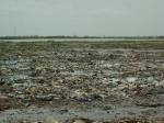 Primer viaje a Senegal - Pais Bassari - Casamance