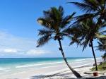 La playa de DIANI: joya keniana del Índico: