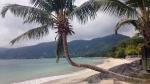 Paradise on Seychelles
