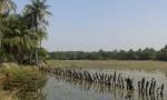 Laguna en Casamance