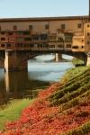 Arno, Firenze