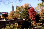 Bow Bridge-Central Park