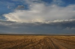 Storm on the Gobi desert