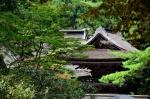 Monte Koya-san Centro del Budismo Shingon