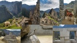 Machu Picchu y sus animales