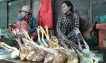 Mercado Camboya