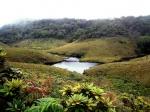12 días en Sri Lanka y Maldivas. De los campos de té a los baños con tiburones