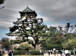Viaje de dos semanas por Japón