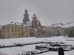 Patea conmigo Cracovia
