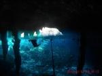 Cenote Dos Ojos - Riviera Maya