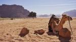 Jordan Trail: Senderismo en Jordania