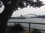 Opera House from Mrs Macquarie 's Chair