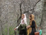24 días viajando sola por Irán