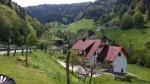 Selva Negra, Cataratas del Rhin y Alsacia