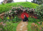 Hobbiton Movie Set 2 Hobbiton Movie Set