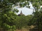 Viaje a Sri Lanka: De Kandy a Dambulla y El Monasterio Budista de RockHill