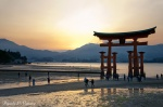 Japón en Invierno. Enero 2017