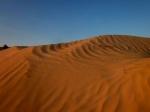 Aventura en el Desierto de Túnez: Oasis y Dunas