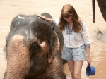 Elefante al agua