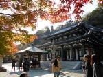Japón en pleno Momiji (Noviembre 2016)