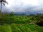 Nuestro primer diario y nada mejor que contar nuestro viaje por Bali, lembongan y Gili.