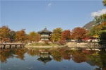 Día 9: Busan