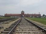 Cracovia, Varsovia, Auschwitz y Minas de sal de Wieliczka