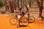 Camino del baobab sagrado