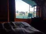 Luxury Accommodation in the Masai Mara