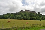 CASTILLO DE STIRLING Y VACAS DE LAS HIGHLANDS CASTILLO, STIRLING, VACAS, HIGHLANDS, Vistas, Castillo, Stirling, alto, ciudad