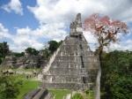 Entradas a Tikal: Cambio de Normativa