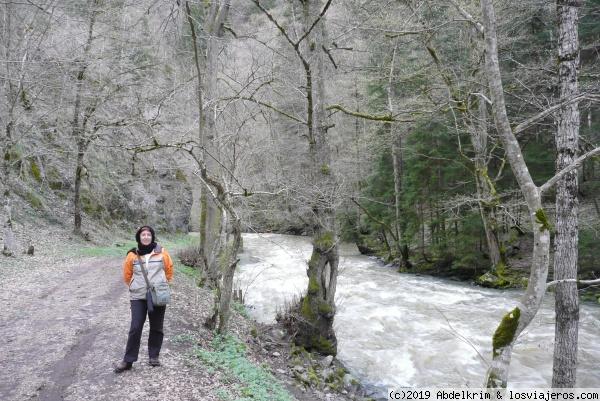 Borjomi es una región de frondosos bosques