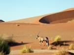 Aventura 4x4 por Botswana y Namibia