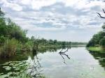 Lake Panic - Skukuza- Kruger NP